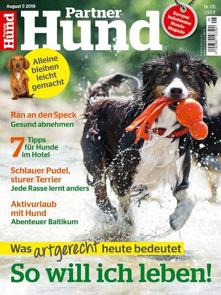 Partner Hund 08/19