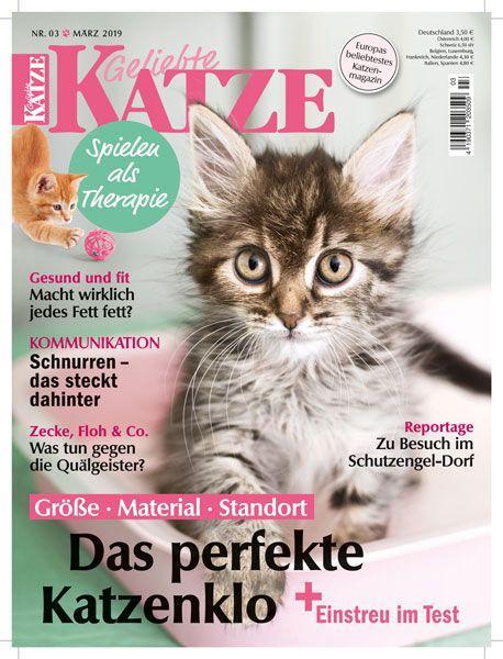 Geliebte Katze 03/19