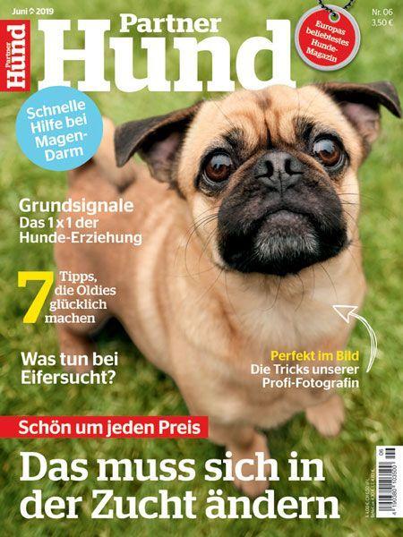 Partner Hund 06/19