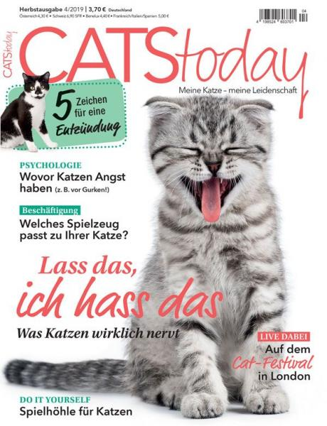 Cats Today 04/19