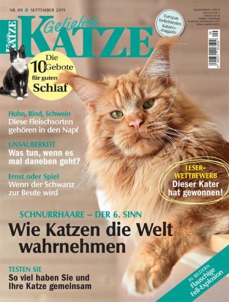 Geliebte Katze 09/19