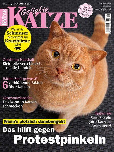 Geliebte Katze 11/18