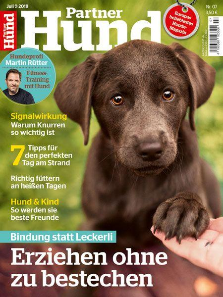 Partner Hund 07/19
