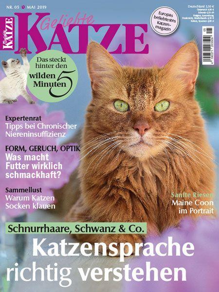 Geliebte Katze 05/19