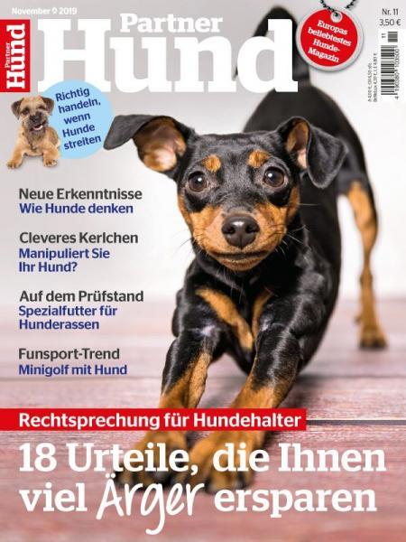 Partner Hund 11/19