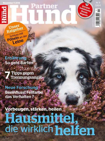 Partner Hund 11/18