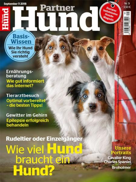 Partner Hund 09/18