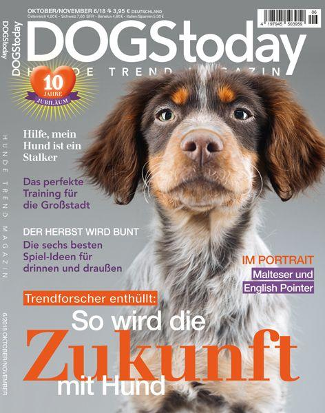 Dogs Today 06/18